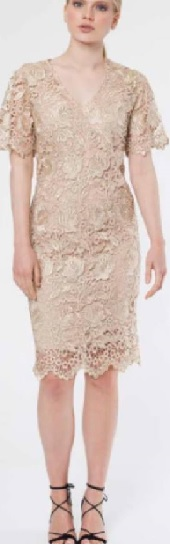 Lace with Sleeves Dress Beige S12/14,  Beige Lace Dress (similar) s20