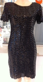 Black Sequin Sleeved Dress S8 sold  Aline S14 similar S16