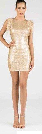 Wild Gold Sequin Dress S8 (small sizing)