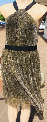 Gold Sparkle Dress S12