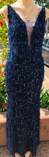 Navy Sequinned Fitted Gown S8/10