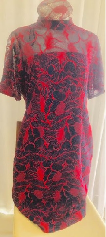 Navy Red Lace Dress S16