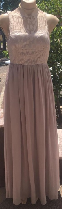 Nude Chiffon Lace Gown S10