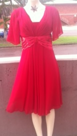 Burgandy Chiffon Dress S10/12
