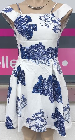 Skater Blue White Dress S8